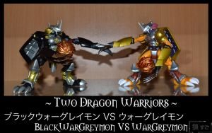 Figure 43 - Two Dragon Warriors by Oukami-SuGo