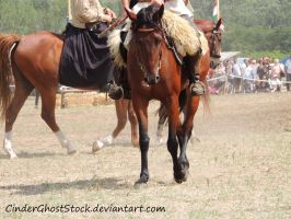 Hungarian Festival Stock 105 by CinderGhostStock