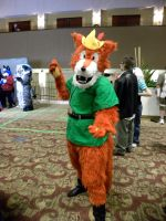 AD 2011 - Robin Hood by The-Emerald-Otter
