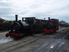Talyllyn and Dolgoch at Wharf by rh281285