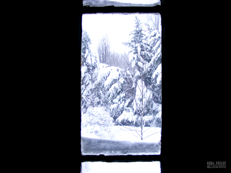 look outside - winter window by Rare-Patent