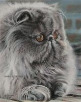 LILLA BOSS 8x10 Pastel on Bristol Board by robybaer