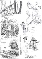 Nature sketches - Winter-Spring2015 by Dasha-KO