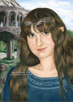 Elf from Rivendell by Ilojleen