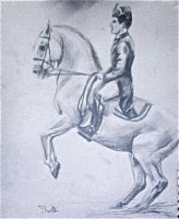 Lipizzaner Horse drawing by brunonade