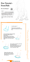 Paw Tutorial - FrontSide by seasonaldragon1