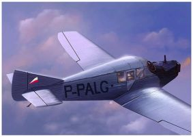 Junkers F13 by dugazm