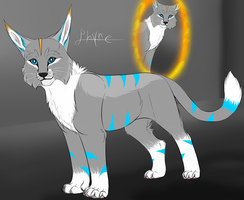 Phyre Reference by Riokou