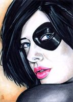 Domino Sketch Card 1 by veripwolf