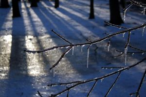 Ice, Light, Shadow 2 by edgyqueen