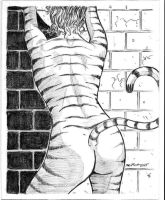 Tigra's Back by montes-h
