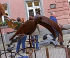 Rusty bird jm0321 by joergens-mi