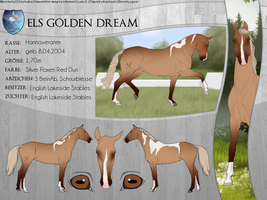 ELS Golden Dream by michelle222