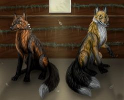 Foxes in henhouse by BullTerrierKa