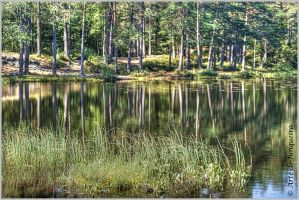 Reflections II by Arte-de-Junqueiro