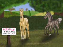 FOR SALE by EdithSparrow