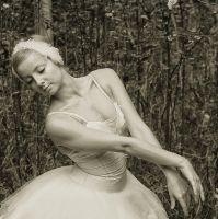 ballet. by RENOPHOTO