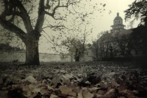 Echoes of distant autumns by krigl