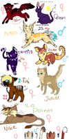 All my bought adopts by chlckadee