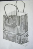 Bag by Ballerinatwin3