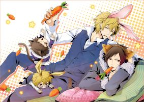 drrr- the cat Izaya and the rabbit Shizuo by moonu17