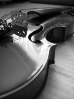 Black and White Violin by sylvialovesphotos