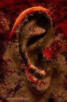 EAR by INDRIKoff