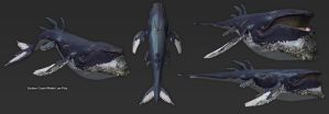 SunkenCoastWhale Lowpoly by DevindraLeonis