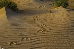 Footprints In The Sand by DeoIron