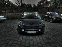 HDRR Peugeot 207 - 12 by Rayce185