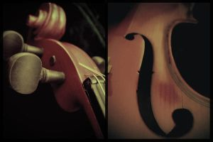 old violin by euphoriccows