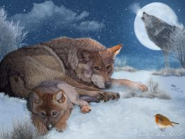 Wolves-rest-a-while- by JaneEden