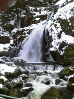 Waterfall 1 by ShawnSPeters