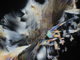 micrograph of citric acid crystals by loganmiracle