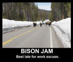 Bison Jam by The-SixthLeafClover