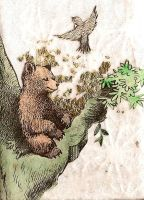 little bear meditates. by triscuitbox