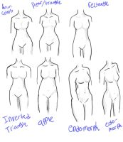 female body types by kishimoto-kyoto