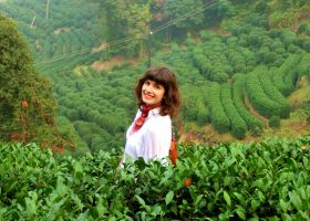 Longjing tea fields. by Eiaolaf
