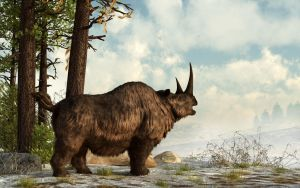 Woolly Rhino by deskridge