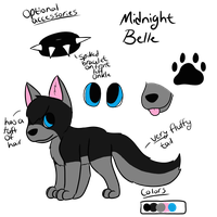 New Midnight Belle Reference Sheet by CollectionOfWhiskers