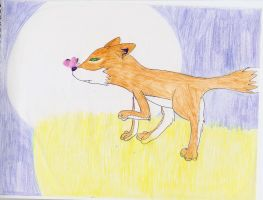 fox and the moon and the butte by Akeudi