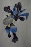 Lucario Conquest by FlyingLion76