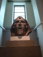 Colossal head of a pharaoh by photodash