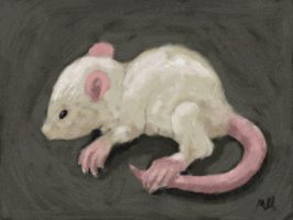 Rat in Dull by abgarok