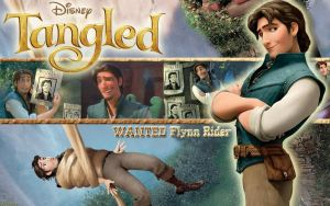 Tangled Wall 3 Flynn Rider by Yamakara
