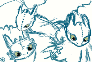 Toothless sketches!!! xD by Archery-colors