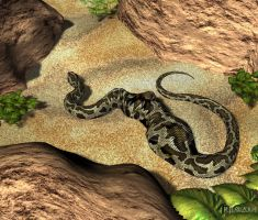 Snake Swallowed by RJLbwb