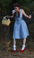 Wizard of Oz: Dorothy and Toto 2 by Luxxurious