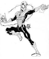 spidy B and W by nork