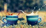 Double splash by Tamerlana